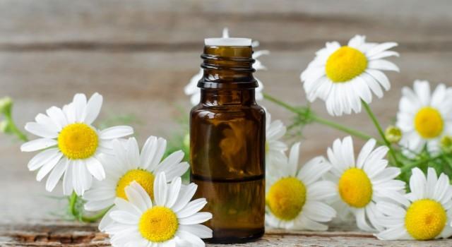 Les huiles essentielles phares et indispensables à l'aube du printemps