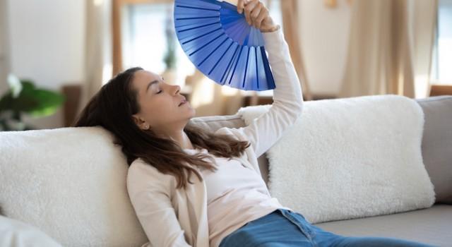 Maison : comment bien choisir son ventilateur colonne ?