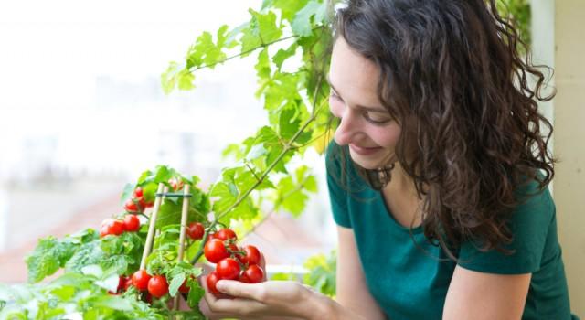 Citadines : nos astuces simples pour vous reconnecter à la nature