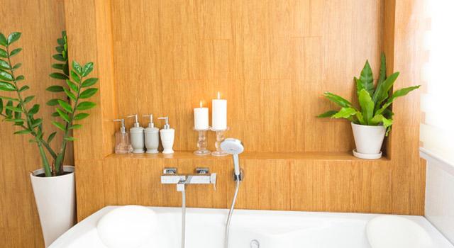 Les plantes pour assainir votre salle de bain