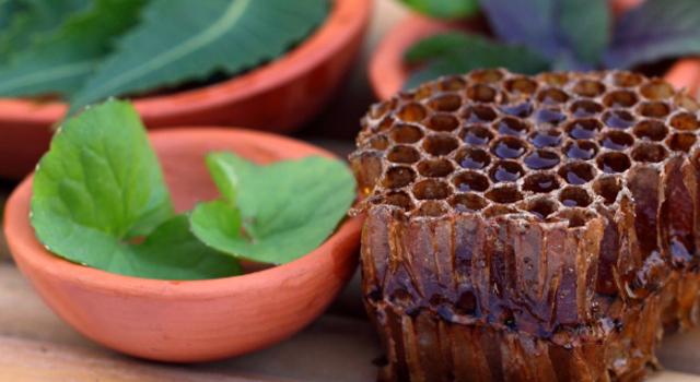 La propolis verte aide à lutter contre les microbes et virus de l'hiver