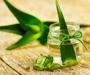 5 façons d'utiliser le gel d'Aloe Vera