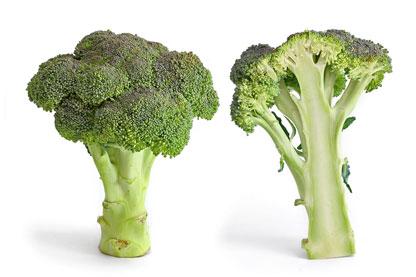 Protégez naturellement vos artères avec une alimentation saine