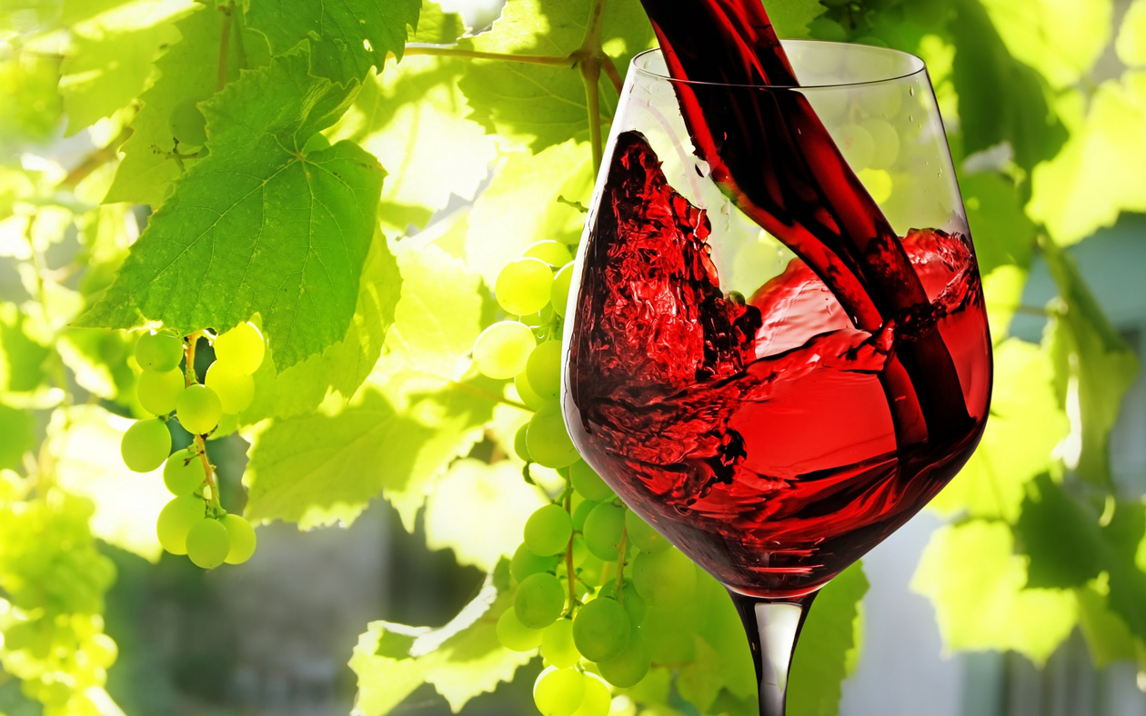 Boire un peu de vin tous les jours, est-ce mauvais pour la santé ?
