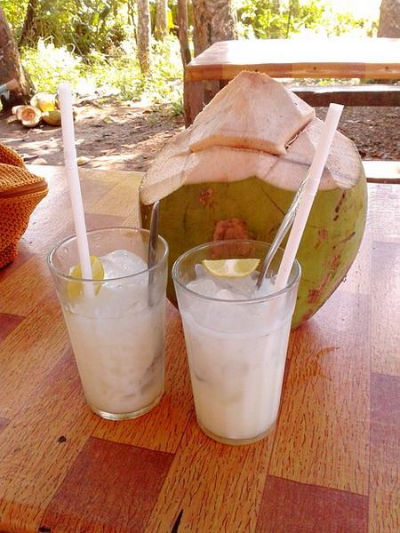 Affublé de nombreux bienfaits, le jus de coco est une boisson rafraîchissante, stimulante et détoxifiante.