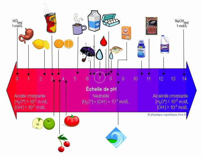 L'équilibre acido-basique pour votre bien-être au quotidien
