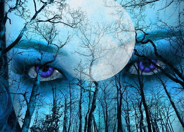 L'influence de la Pleine Lune sur la qualité de notre sommeil est-il avéré ?