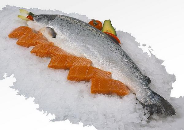La presse a lancé une alerte sur l'élevage industriel du saumon en Norvège. Doit-on éviter le saumon d'élevage ?
