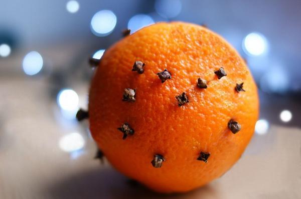 La dengue se propage, il est recommandé de bien se protéger des piqures de moustiques.